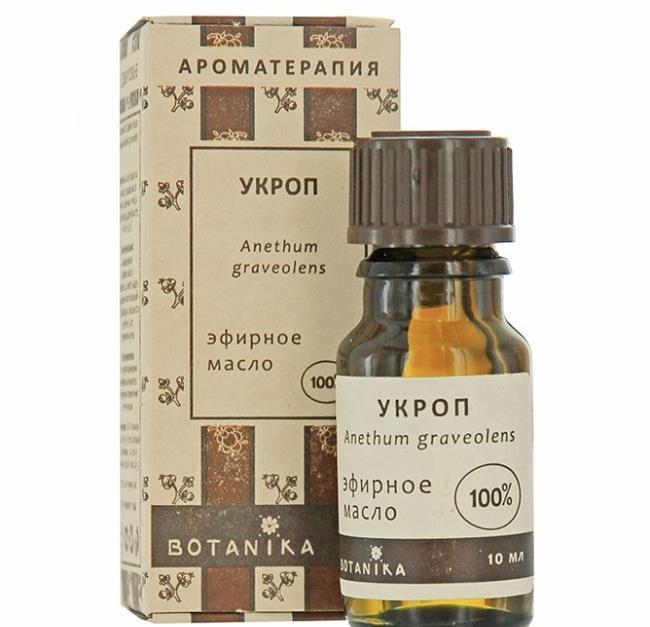 Укроп эфирное масло Ботаника