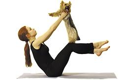 doga-yoga_1
