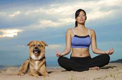 doga-yoga_4