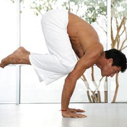 Vlianie_yogi44