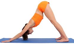 yoga_oseniu2