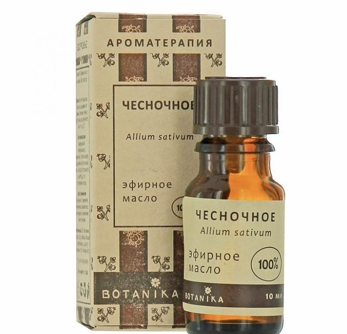 Чесночное эфирное масло Ботаника