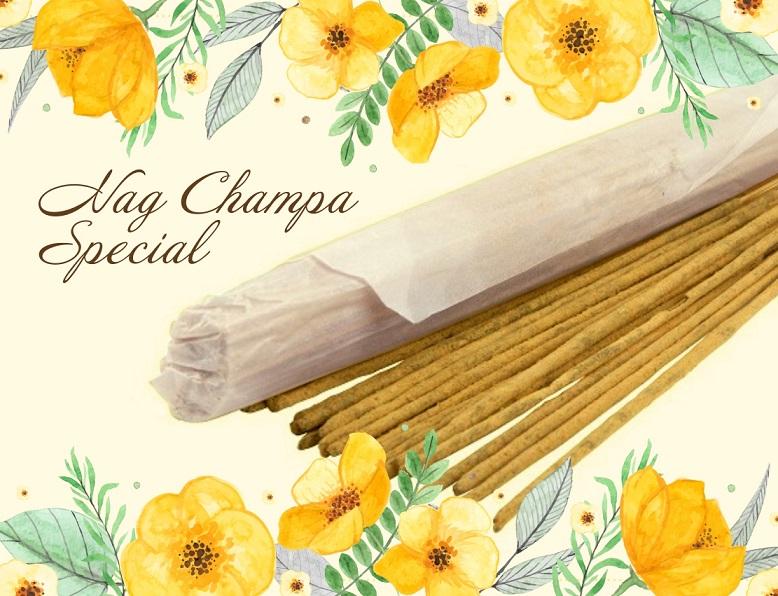 Благовония Храмовые Nag Champa Special (0,05 кг) благовония храмовые cobra 0 05 кг