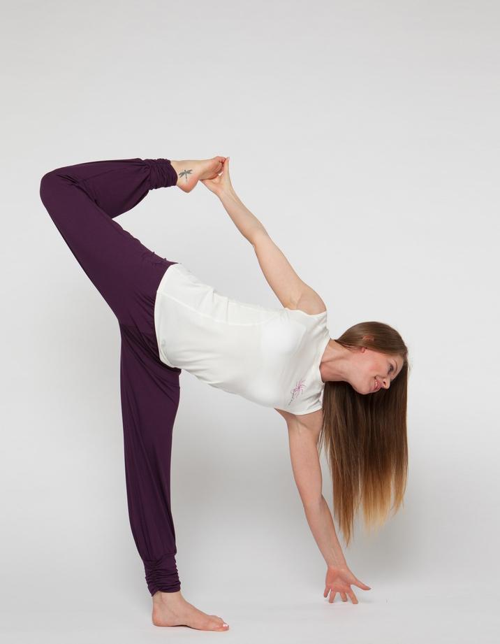 Штаны- гаремы длинные YogaDress (0,3 кг, S (42-44), фиолетовый \ черничный) цена